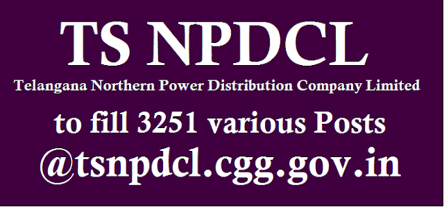 NPDCL, Recruitments, Telangana Northern Power Distribution Company Limited, TS Jobs, TS NPDCL Jobs, TS State
