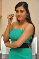 Shipra Gaur in a green tight small dress at Baby movie Audio Launch 20th April 2017 010.JPG