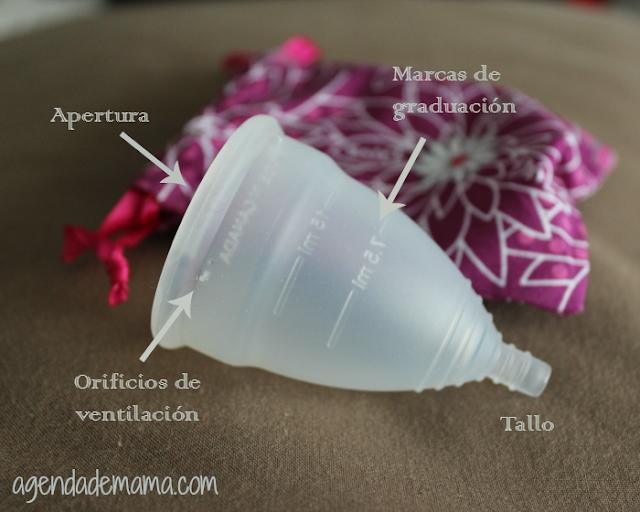 Cómo es una copa menstrual
