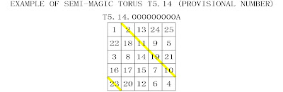 order 5 semi-magic torus type 14