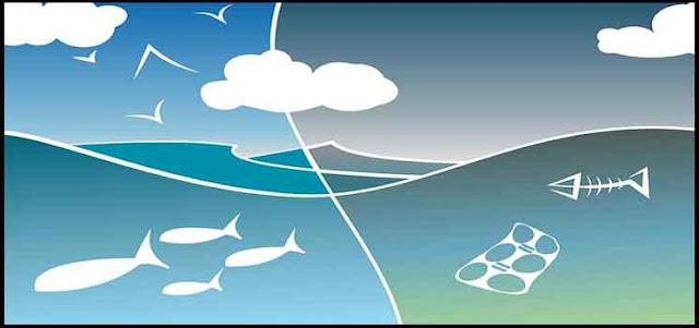 Macam-Macam Indikator Pencemaran Lingkungan