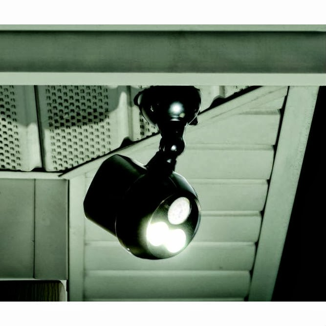 Dragonfly Treasure: Best Motion Detector Security Light