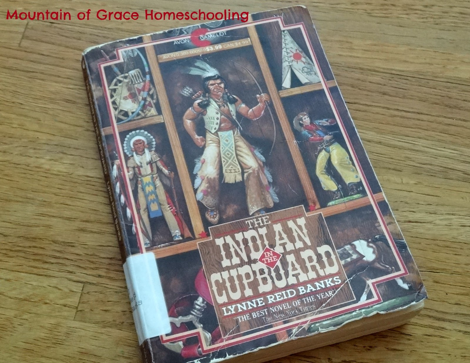 Mountain Of Grace Homeschooling Tos Review Indian In The