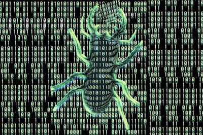 What Is Bugs & Viruses In Computers ?