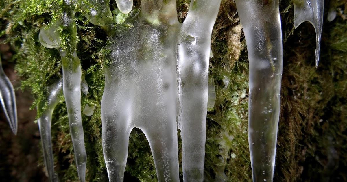 Annen jutut: JUURIHOITOA root canal treatment