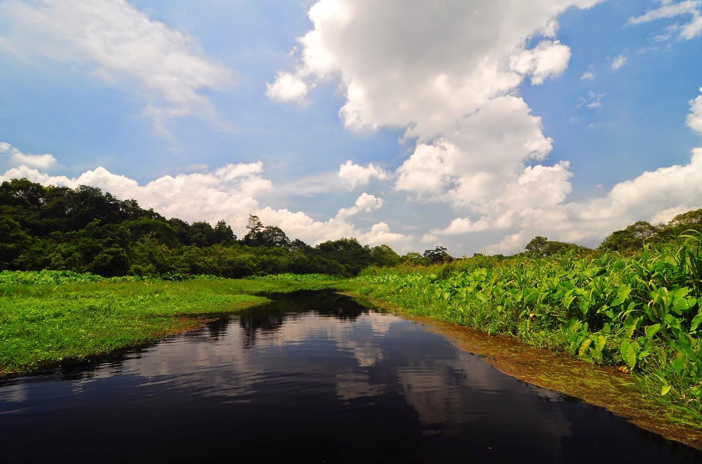 Menelusuri Lembah Hijau Rawa Dano Dinas Pariwisata Provinsi Banten
