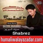 http://audionohay.blogspot.com/2014/11/shabrez-nohay-2015.html