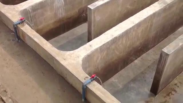 concrete fishpond design