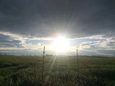 Agroturismo Arkaia, turismo rural sostenible en Vitoria - Gasteiz