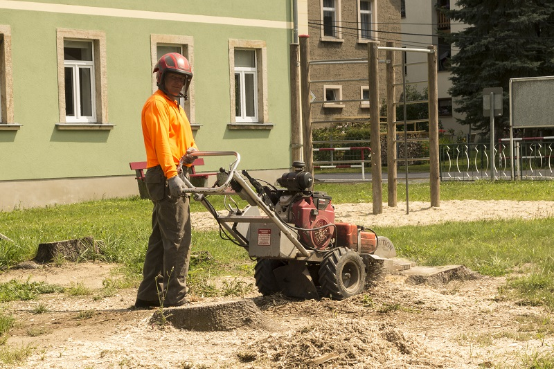Crucial Safety Tips on Stump Removal Grinder Method
