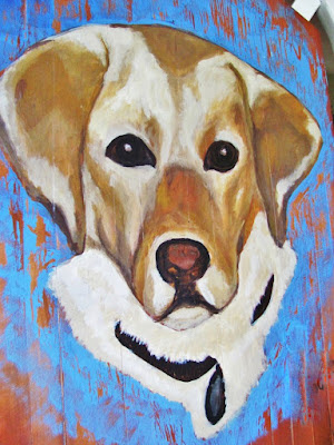 yellow labrador pet portrait