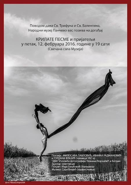 """""""Krilate pesme i prijatelji"""" u Narodnom muzeju Pančevo"""