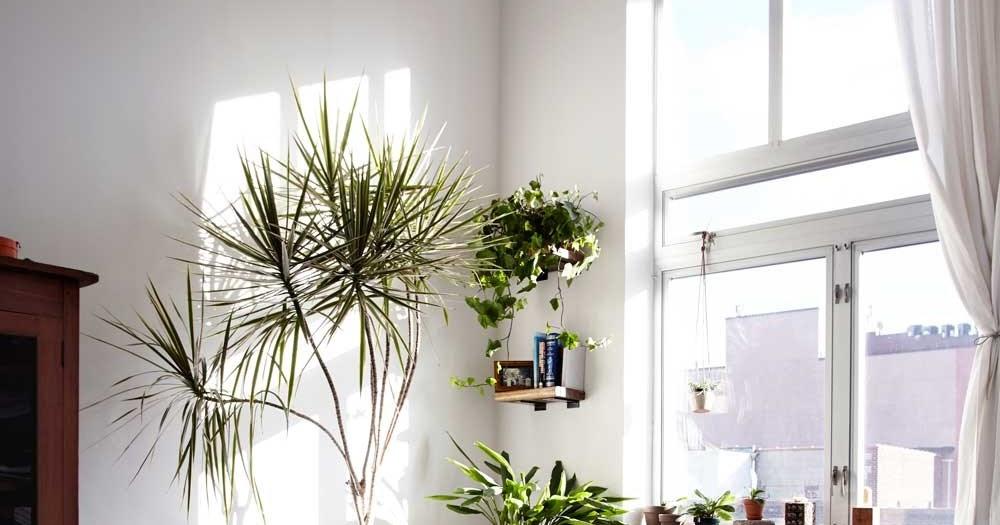 Decoraci N Minimalista En Un Apartamento Peque O Blog