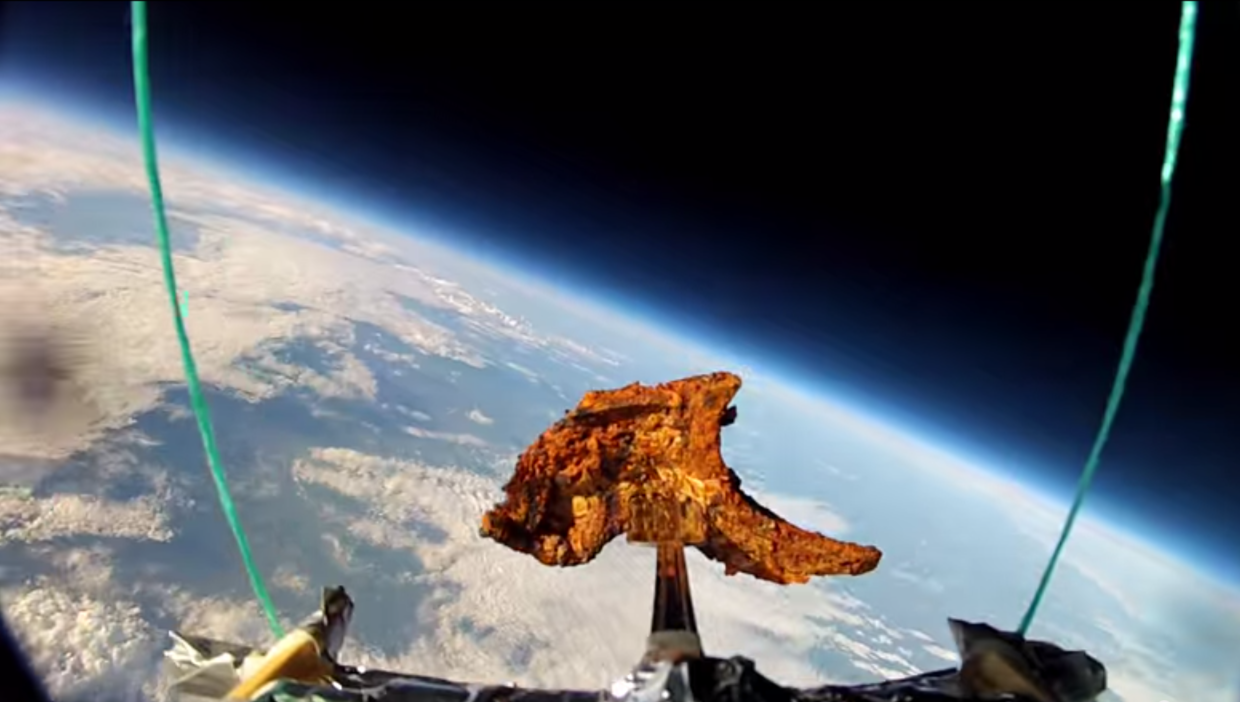 Tandoori Lambchop Launched to Space