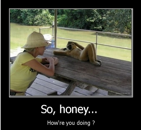 Funny Images Imthy So Honey How Are You Doing