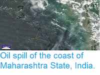 http://sciencythoughts.blogspot.co.uk/2013/10/oil-spill-of-coast-of-maharashtra-state.html