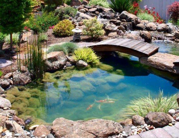 Taman Kolam Ikan Minimalis