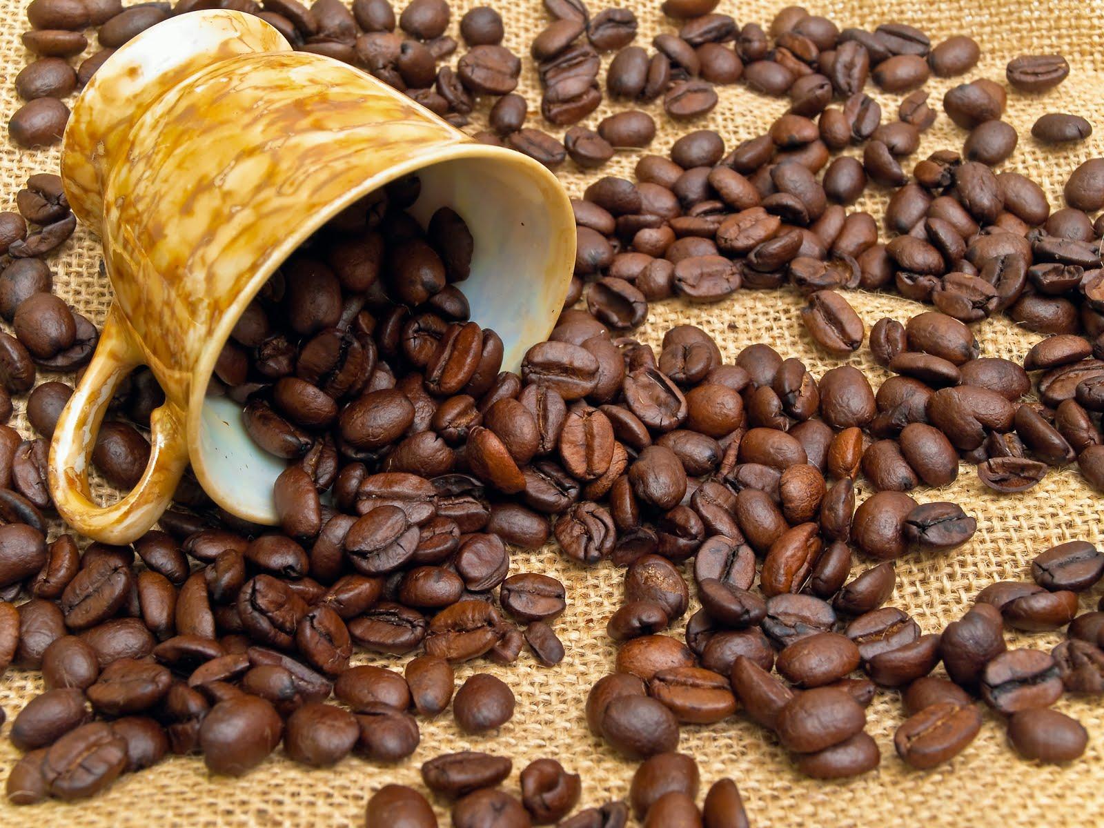 Resultado de imagen para granos de cafe tostados