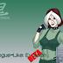 Rogue-Like: Evolution 0.982d APK Full Version