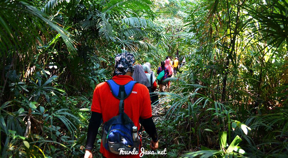 Trekking dari Cibom - Tanjung Layar: Menapaki Saksi Sejarah Letusan Gunung Krakatau | Wisata Pulau Jawa