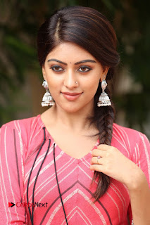 Actress Anu Emmanuel Pictures at Majnu Success Meet  0002.JPG