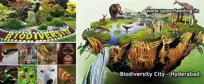 Telugu Quotes Wallpapers What Is Biodiversity Why Is Biodiversity Important