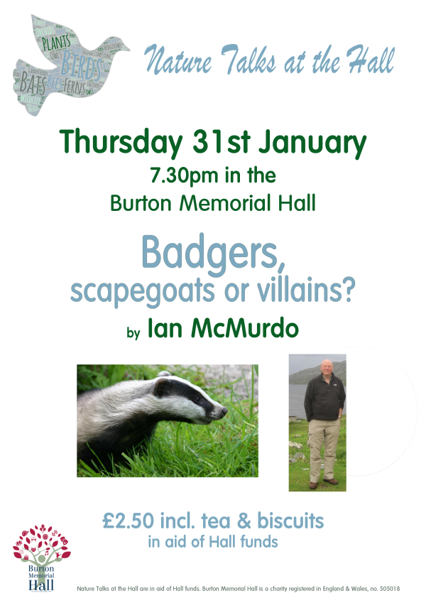 Badgers, scapegoats or villains?