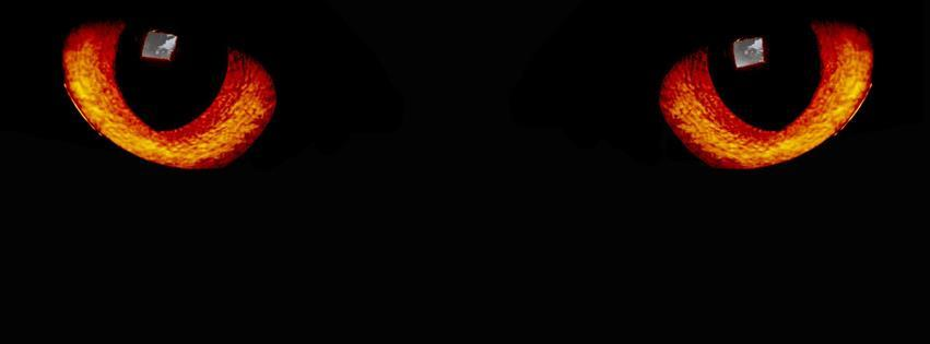 3 Ways to Put Symbols on Facebook - wikiHow