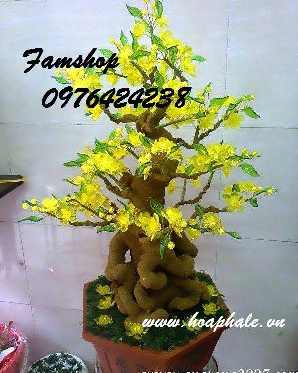 Goc bonsai mai dao tai Giai Phong