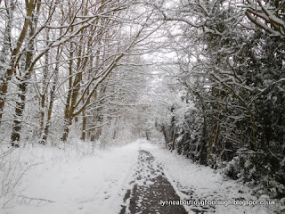 Snowy path at Charnwood Water Loughborough
