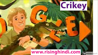 this is the image of google doodle crikey birthday