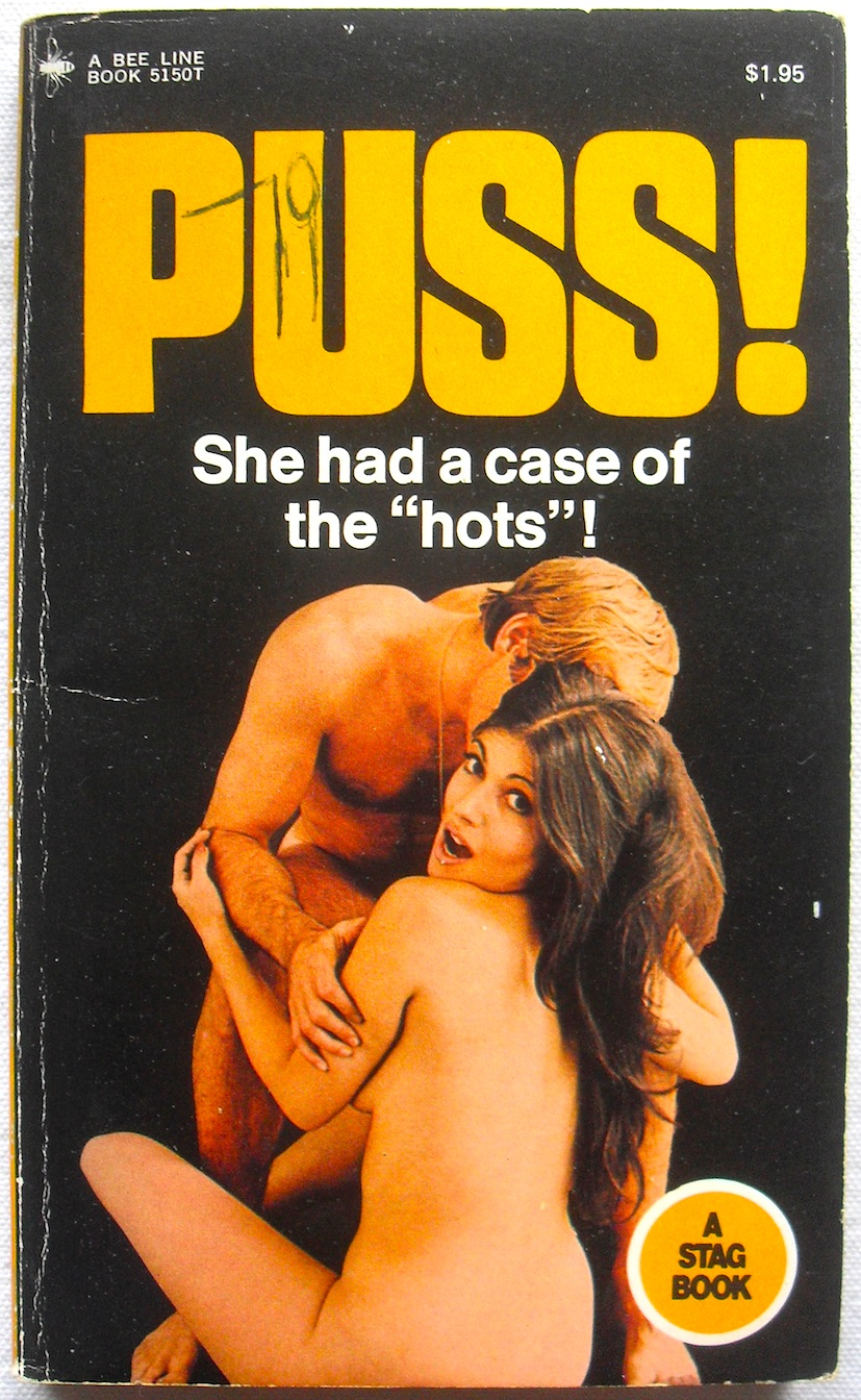 porn literature