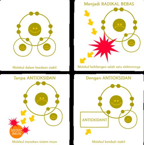 Lkaran tindak balas antara radikal bebas dan antioksidan