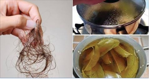Stop-Hair-Loss-Grow-back-Hair-Naturally