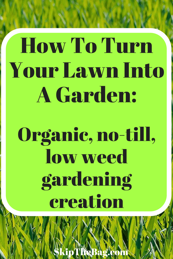 Skip The Bag How To Turn Your Lawn Into A Garden