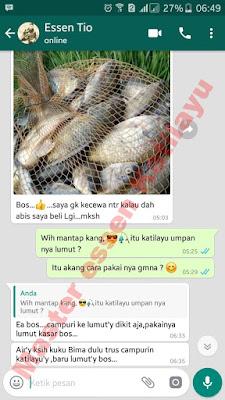 Umpan Untuk Ikan Nila Babon Master Essen Katilayu