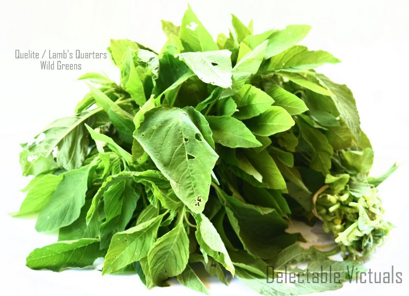 Quelite Lamb's Quarter Leaves with Potatoes mexican greens pigweed hepatoprotective antibacterial greens