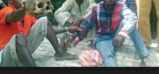 Three Friends With Human Skull Arrested In Ekiti [Graphic Photo]