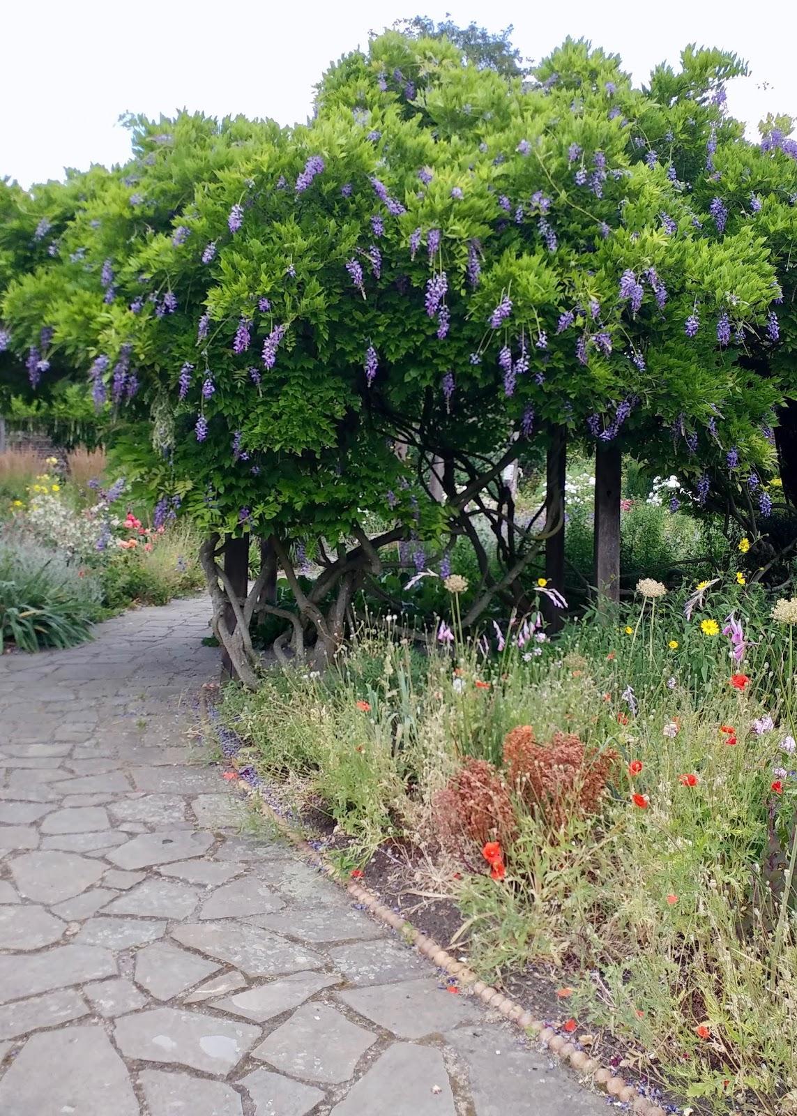 brockwell park flower garden