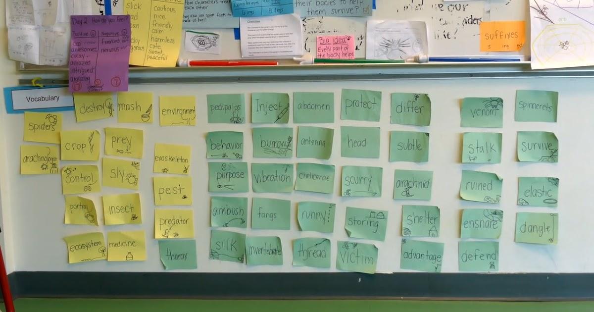 A Teacher's Idea: The Importance of Word Walls