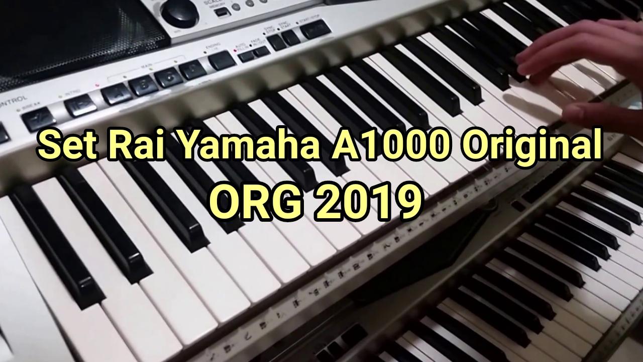 set korg yamaha a1000 rai