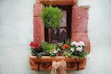 5 ไอเดียง่ายๆ ปลูกดอกไม้ริมหน้าต่าง เพิ่มสีสันให้บ้านสวยๆ