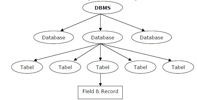 Pengenalan DBMS dan MySQL   Berbagi dan Belajar