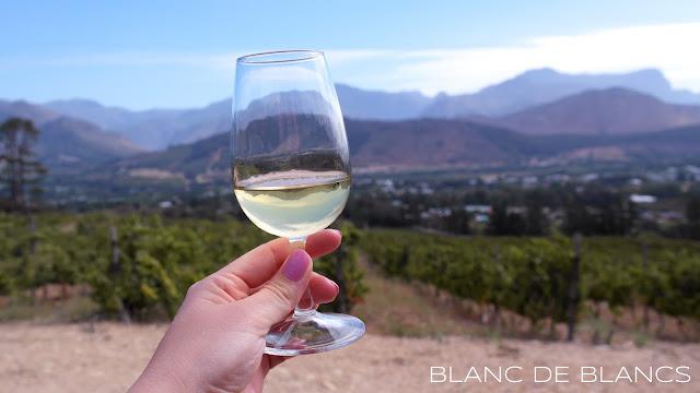 Anna kaikille viineille mahdollisuus - www.blancdeblancs.fi