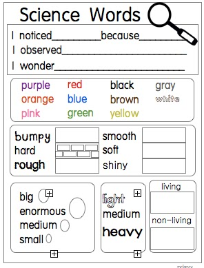 science words grade word cards writing notebooks kindergarten students learning kc joyful 1st interactive sentence implement properties matter tiff scientist