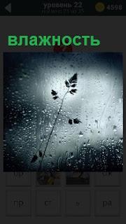 В запотевшем окне от большой влажности видны размытые огни и мелкие капли