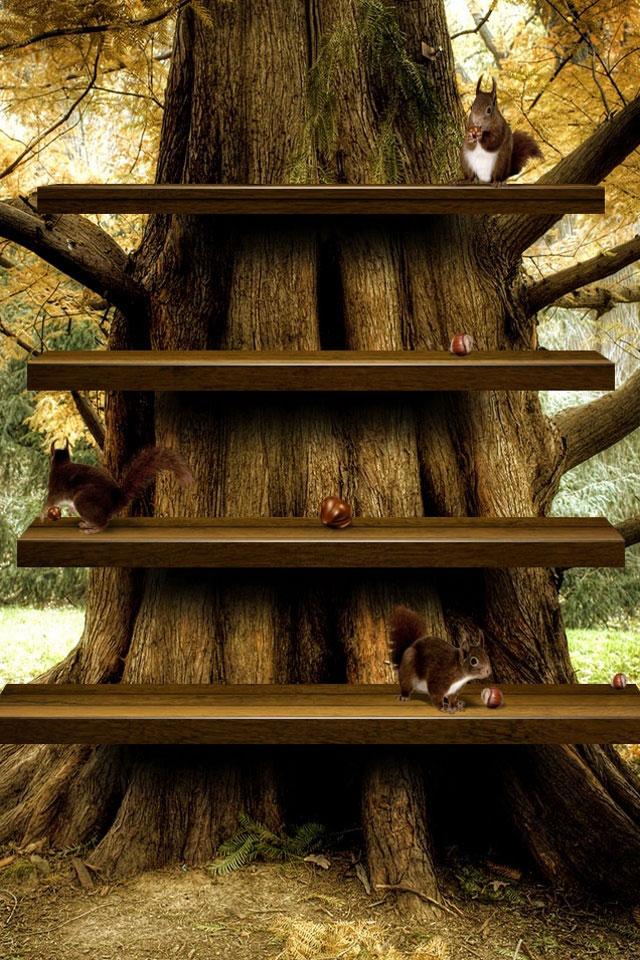 Bonsai Tree Iphone Wallpaper スマホ壁紙box 大木の棚壁紙