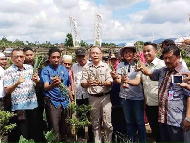 Panen Tanaman Holtikultura, Frans Manery Harap Tingkatkan Produksi Bawang Merah