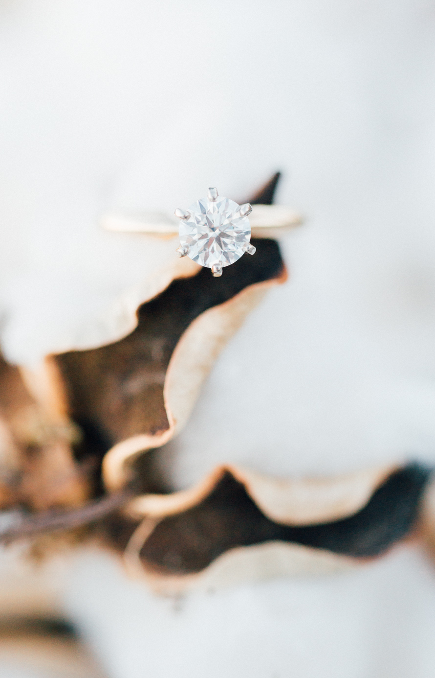 Diamond Solitaire Engagement Ring | Something Minted Photography
