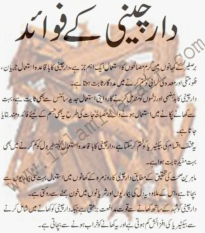 daar cheeni ke fawaid in urdu